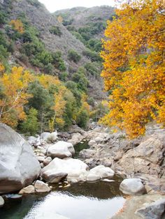 Paysages de Sequoia NP