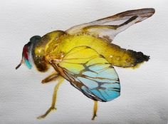 paintings: Insect Invasion! Carol Carter