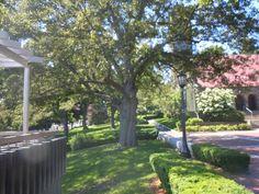 Tufts University, Medford, MA.