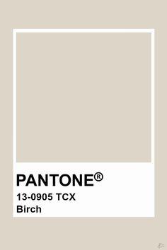 Pantone Birch Pantone Tcx, Paleta Pantone, Pantone Swatches, Color Swatches, Pantone Paint, Pantone 2020, Colour Pallete, Colour Schemes, Color Trends