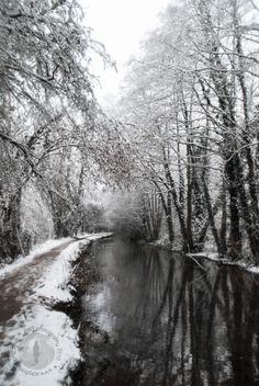 Snowy reflections by Ester de Roij on 500px