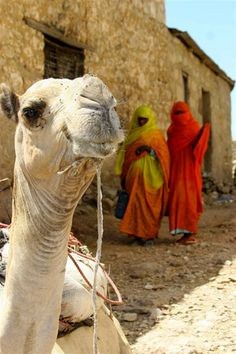 Village scene, Eritrea