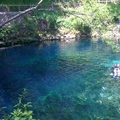 Blue springs, Valdosta-GA