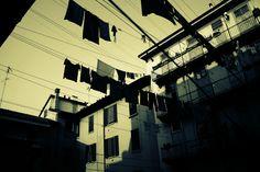 Explore Mangiu's photos on Flickr. Mangiu has uploaded 172 photos to Flickr.