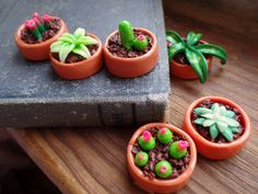 Plant Magnets: Cacti and Succulents handmade with Polymer Clay Set of 6  $10.00
