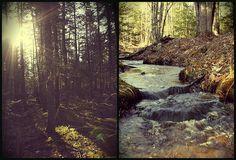 bright beginning by taralees on flickr