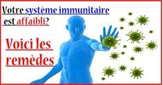Votre système immunitaire est affaibli? Voici les meilleures plantes pour le renforcer