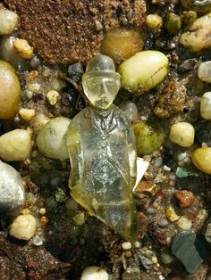 Amazing sea glass find: Charlie Chaplin in Bellport, NY Sea Glass Beach, Sea Glass Art, Beach Stones, Sea Glass Jewelry, Mosaic Glass, Stained Glass, Sea Glass Crafts, Beach Crafts, Fancy