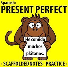 El mono es lindo y utiliza el presente perfecto!