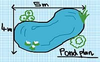 1000 images about ponds on pinterest backyard ponds for Koi pond liner calculator