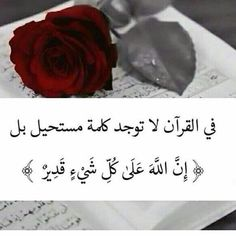 Arabic Quotes, Islamic Quotes, Sweet Qoutes, Prayer For The Sick, Diamond Quotes, Allah, Hazrat Ali, Islamic Pictures, Holy Quran