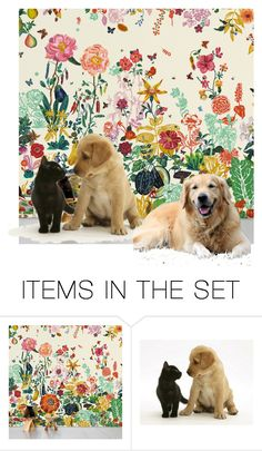 """""""Dogs and Cat"""" by bambi-52 on Polyvore featuring art"""