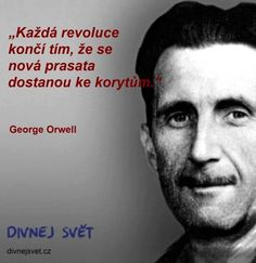 George Orwell, Intj, True Stories, Quotations, Haha, Humor, Wisdom, Motivation, Education