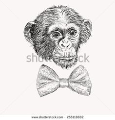 Sketch monkey face with bow tie. Hand drawn doodle illustration ...