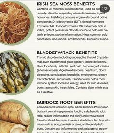 Healthy Oils, Healthy Recipes, Seamoss Benefits, Sea Moss, Natural Health Remedies, Health And Wellbeing, Healthy Choices, Decir No, Herbalism