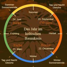 Das Jahr im keltischen Baumkreis - ein Überblick.