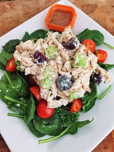 You won't miss the mayo in this chicken salad recipe. This Greek Yogurt Chicken Salad has all the flavor and texture you love.