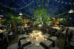 Conservatory is a unique Michigan garden wedding venue for ceremonies and receptions in our botanical conservatory.Planterra Conservatory is a unique Michigan garden wedding venue for ceremonies and receptions in our botanical conservatory. Michigan Wedding Venues, Unique Wedding Venues, Wedding Reception Venues, Wedding Locations, Wedding Ideas, Trendy Wedding, Diy Wedding, Reception Ideas, Wedding Inspiration