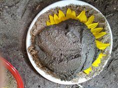 Sidste sommer afprøvede jeg konceptet: solsikker i beton ... og dengang lovede jeg vist en DIY- Det blev så ikke rigtig til noget, men R...