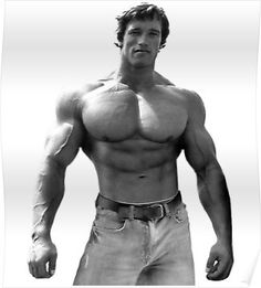 I dont need your acceptance i have already accepted myself arnold pose poster malvernweather Image collections