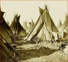 Simply titled: A Sioux Camp. Something about this photo just grabbed me. A walk back in time maybe!: