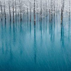 Blue Pond / Hokkaido, Japan