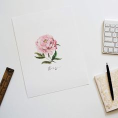 Instagram media by cautiouslyobsessed - just added some brand new prints of some of my illustrations up in the shop, including this print which will have to hold me over until the next peony season .