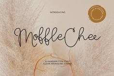 Wow picks! Moffle Chee Handwritten Stylish Unique Font Script at €2.90 Choose your wows. 🐕 #Handmade #Instagram #Logo #Brush #Paint #Branding #Restaurant #Bold #Cute #Dope Best Script Fonts, Modern Script Font, Handwritten Script Font, Calligraphy Fonts, Cool Fonts, New Fonts, Lettering, Fashion Typography, Typography Quotes