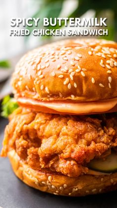 Spicy Chicken Sandwiches, Spicy Fried Chicken, Chicken Sandwich Recipes, Fried Chicken Recipes, Buttermilk Fried Chicken Sandwich Recipe, Spicy Chicken Burgers Recipe, Homemade Chicken Burgers, Crispy Chicken Wraps, Crispy Chicken Burgers
