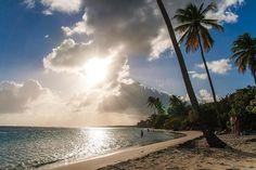 Grand Terre - Guadeloupe
