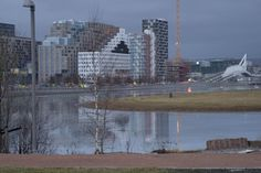 View towards Bjørvika from middelalderparken with ice and water in the pond
