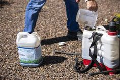 How you can boost soil health and reduce pesticide and chemical use with Holganix. Lawn Turf, Insect Activities, Compost Tea, Lush Lawn, Plant Health, Landscaping Supplies, Blooming Plants, Microbiology, Trees And Shrubs