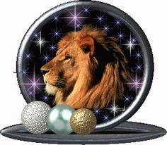 Löwen Gifs