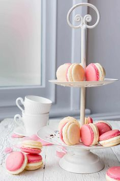 Making Macarons can be a daunting task. This super handy Thermomix Macarons Masterclass will help you conquer all the necessary skills you need. Macaron Thermomix, Macaron Recipe, Thermomix Desserts, Thermomix Scones, Kitchen Surface, How To Make Macarons, Making Macarons, New Oven, White Icing