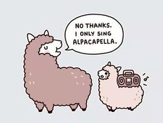 Alpacapella T-shirt from Theadless Sessions - maybe we'll see alpacas singing alpacapella this weekend! Alpacas, The Funny, Hilarious, Funny Stuff, Funny Things, Lolita Anime, Alpaca Funny, Alpaca Cartoon, Animals