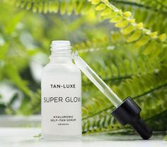 Tan-Luxe Super Glow Hyaluronic Self-Tan Serum | British Beauty Blogger Best Spf Sunscreen, Tanning Sunscreen, Super Glow, Natural Tan, Face And Body, Serum, British, Skin Care, Beauty