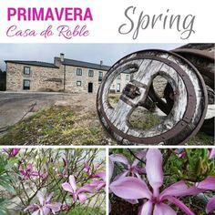 ¡Buenos y soleados días! ¡El entorno de nuestra #casarural se viste de primavera!   www.casadoroble.com  #CasadoRoble #Lugo #Guitiriz #primavera #spring #pilgrimage #pilgrim #peregrinos #flowers #flores — en Casa do Roble.