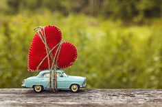 Cool Pictures For Wallpaper, Cute Pictures, Beautiful Pictures, Miniature Photography, Cute Photography, Love Wallpapers Romantic, Cute Wallpapers, Attractive Wallpapers, Saint Esprit