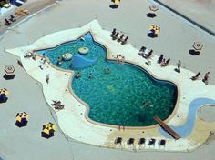 A cat-shaped swimming pool at Fontainebleau, circa 1955.
