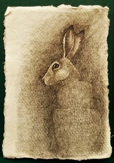 Shadow Hare by Deborah Sheehy (Daily Drawings and Finding Flow) Hare Today Gone Tomorrow, Art Pictures, Animal Pictures, Animal Drawings, Art Drawings, Year Of The Rabbit, Rabbit Illustration, Murals Street Art, Rabbit Art