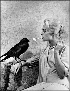 Philippe Halsman photographs Tippi Hedren, Star of Hitchcock's 'The Birds', 1962