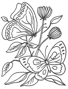 Butterfly Drawings in Color | For an added effect, colour some or all parts of the butterflies with ...