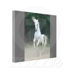 Shop Dazzling White Horse - Premium Wrapped Canvas created by mockapupps. Canvas Canvas, Canvas Prints, Wrapped Canvas, Moose Art, Decor Ideas, Horses, Animals, Photo Canvas Prints, Animaux
