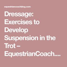 Dressage: Exercises to Develop Suspension in the Trot – EquestrianCoach.com Blog
