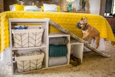 All you need to know about pets for kids learning in one place! Pet Steps For Bed, Dog Stairs For Bed, Dog Ramp For Bed, Pet Ramp, Dog Steps, Diy Dog Bed, Diy Bed, Dog Window Seat, Diy Projects Pictures