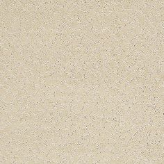 Color: 00105 Churro CCS20 Capellini - Shaw Caress Carpet Georgia Carpet Industries