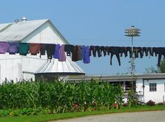 Amish Laundry Photograph  - Amish Laundry Fine Art Print
