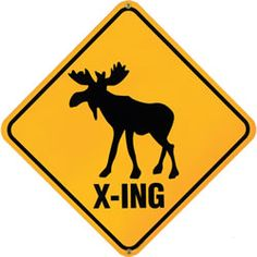 Saw a lot of these in Canada but never saw a moose #moose #crossing