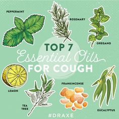 Top 7 Essential Oils for Cough Dealing with a cough? Try these top 7 essential oils for cough to fin Essential Oils For Cough, Oils For Sinus, Oregano Essential Oil, Lemon Essential Oils, Essential Oil Uses, Natural Cough Remedies, Herbal Remedies, Health Remedies, Peppermint Oil Benefits