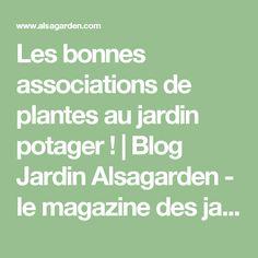 Les bonnes associations de plantes au jardin potager ! | Blog Jardin Alsagarden - le magazine des jardiniers curieux